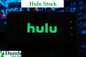 Hulu Stock Price: All Round Guide To Get It In 2021!